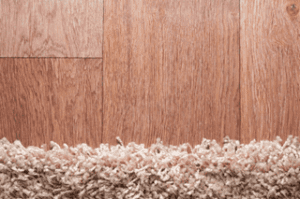 Get $20 Off a Deep Cleaning When You Schedule a Carpet Cleaning! | Carpe Diem Cleaning
