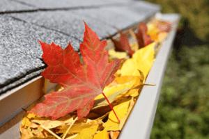 Fall Home Maintenance Tips Carpe Diem Cleaning