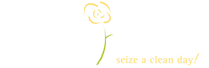 Carpe Diem Cleaning
